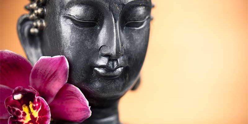 bouda-fleur